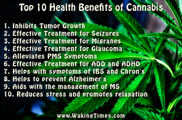Medical marijuana is available in several different forms. It can be ...