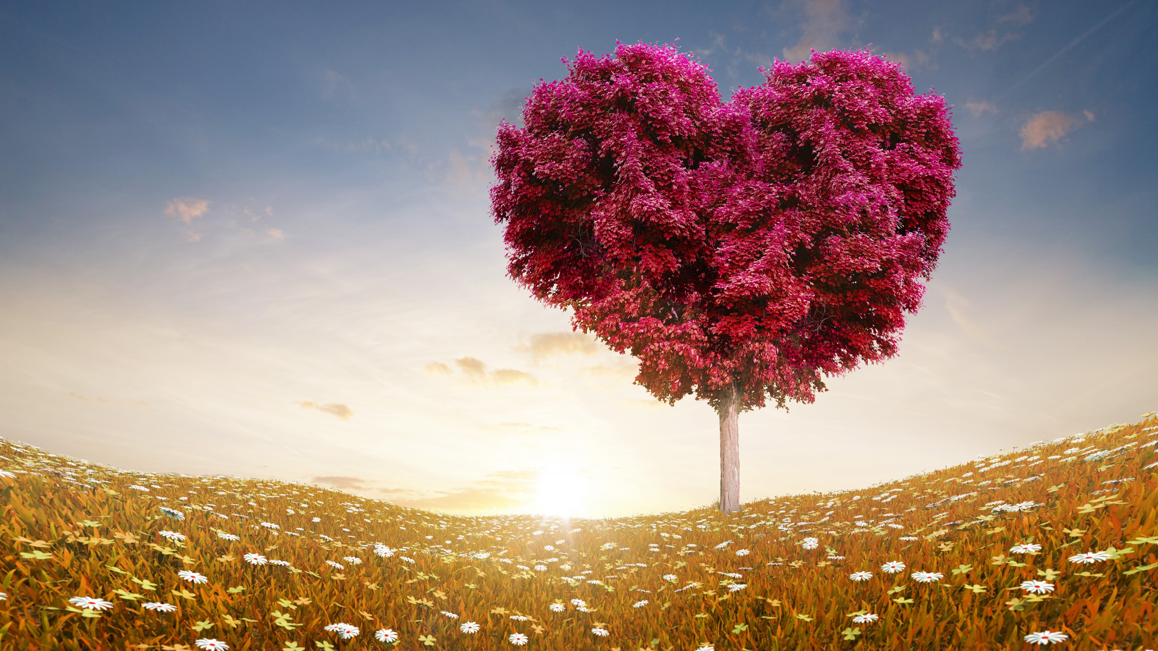 56 Love Wallpaper Backgrounds That Your Desktop Will Make You Feel Amazing