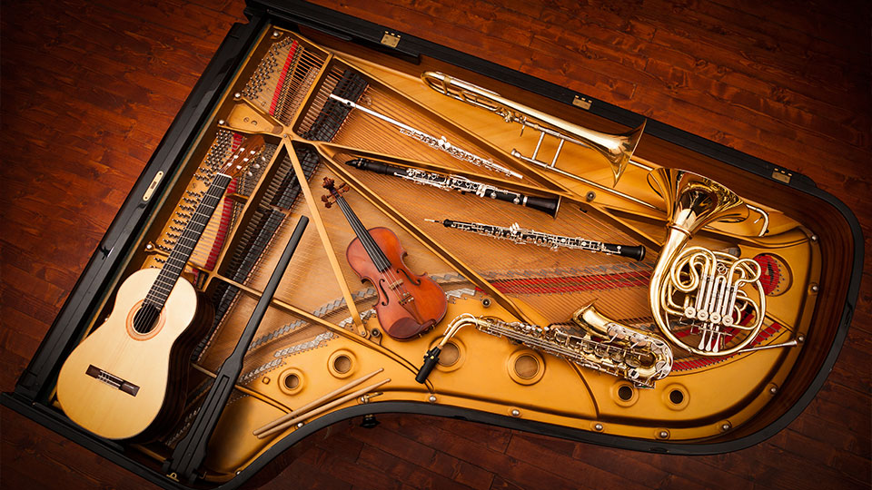Musical Instruments Signature Insurance Program - Anderson Group
