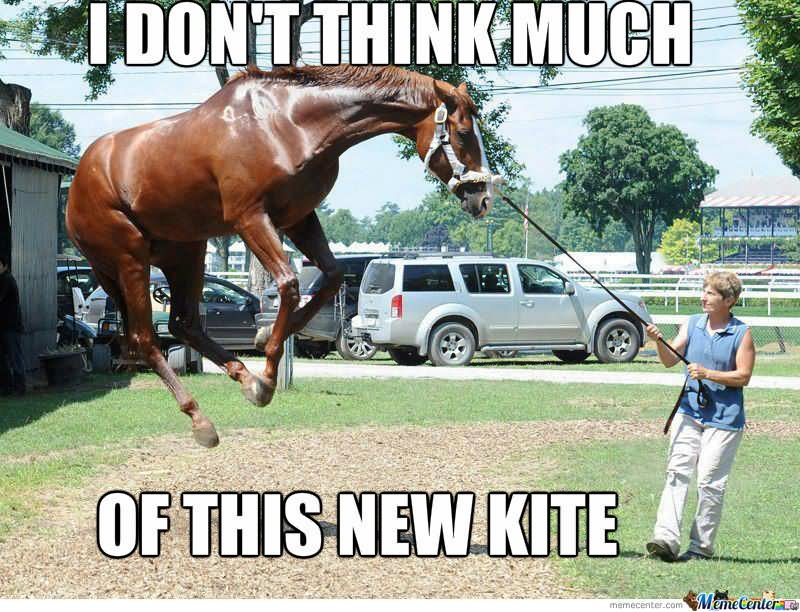 25 Very Funny Horse Meme Photos And Pictures