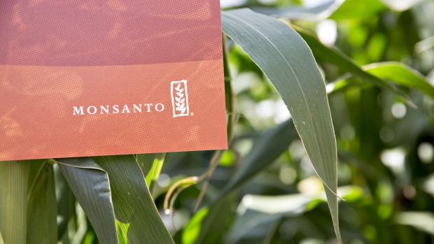 Ex-Monsanto Researcher Accused of Taking Trade Secrets to China…