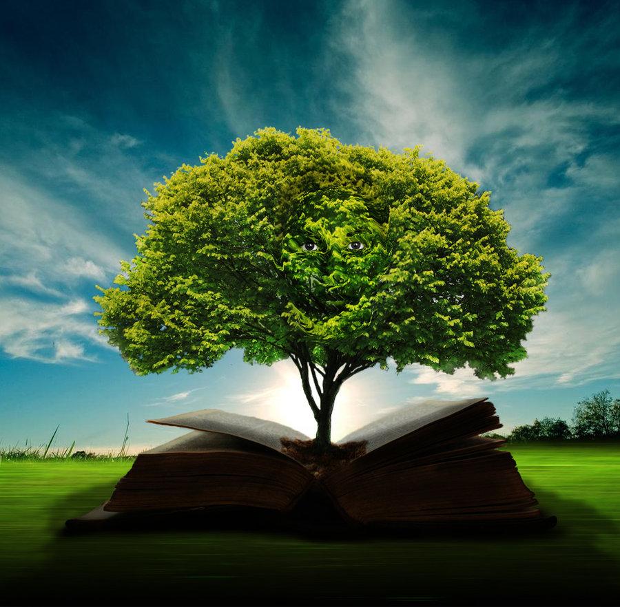 The Enduring Value Of Wisdom | CBMC International