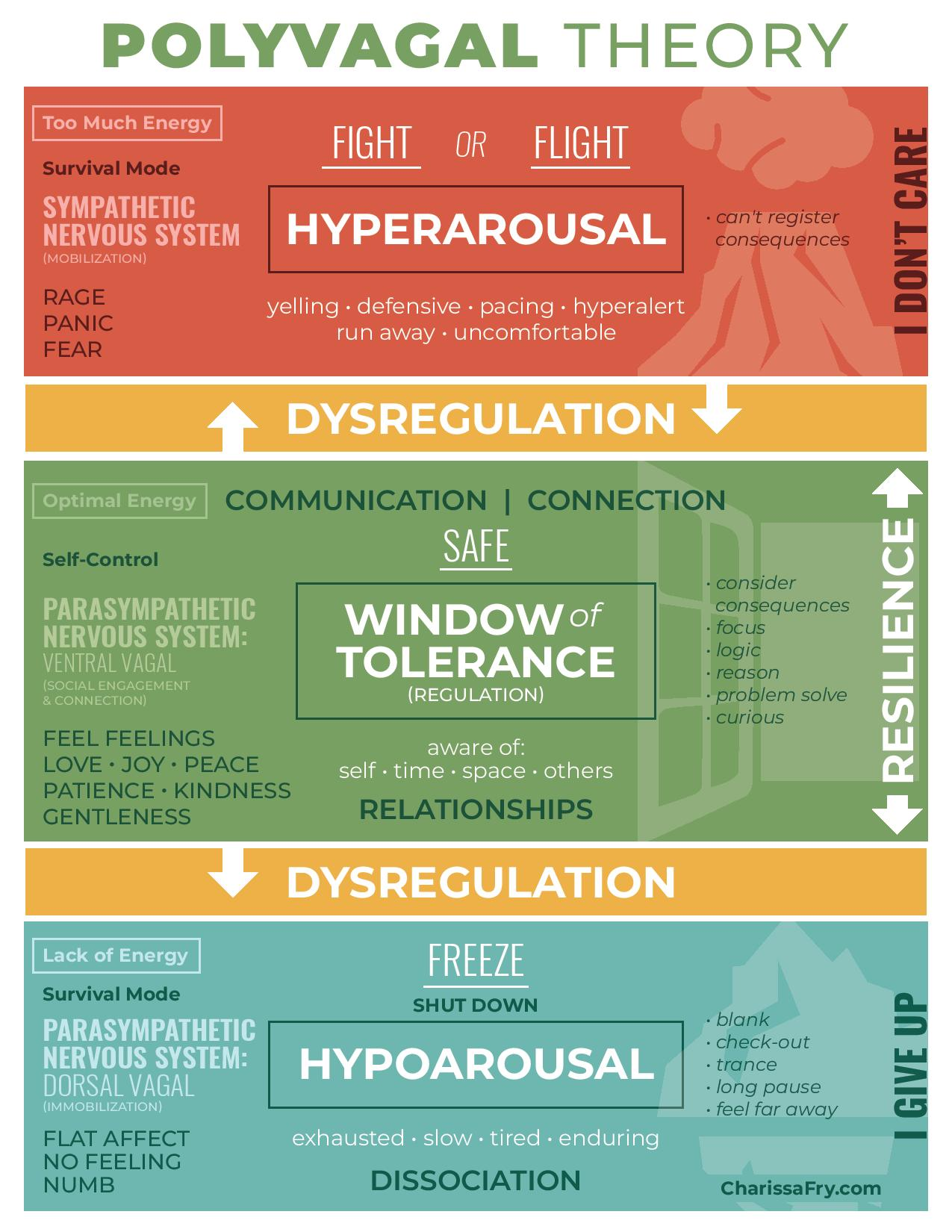 Polyvagal Theory Infographic - Charissa Fry Counseling