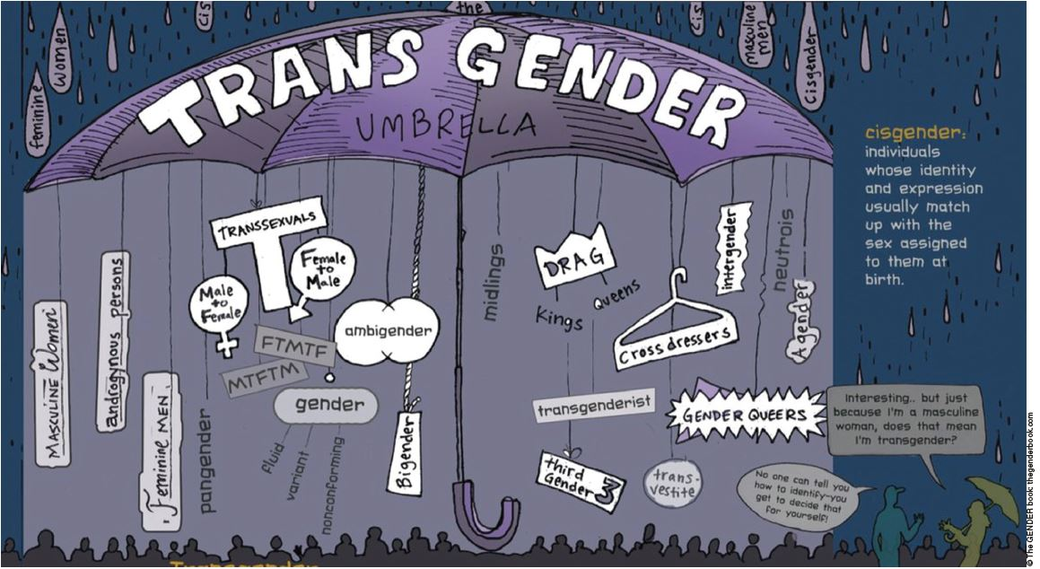 Gender recognition, self-ID and next steps   COUNSEL   The ...