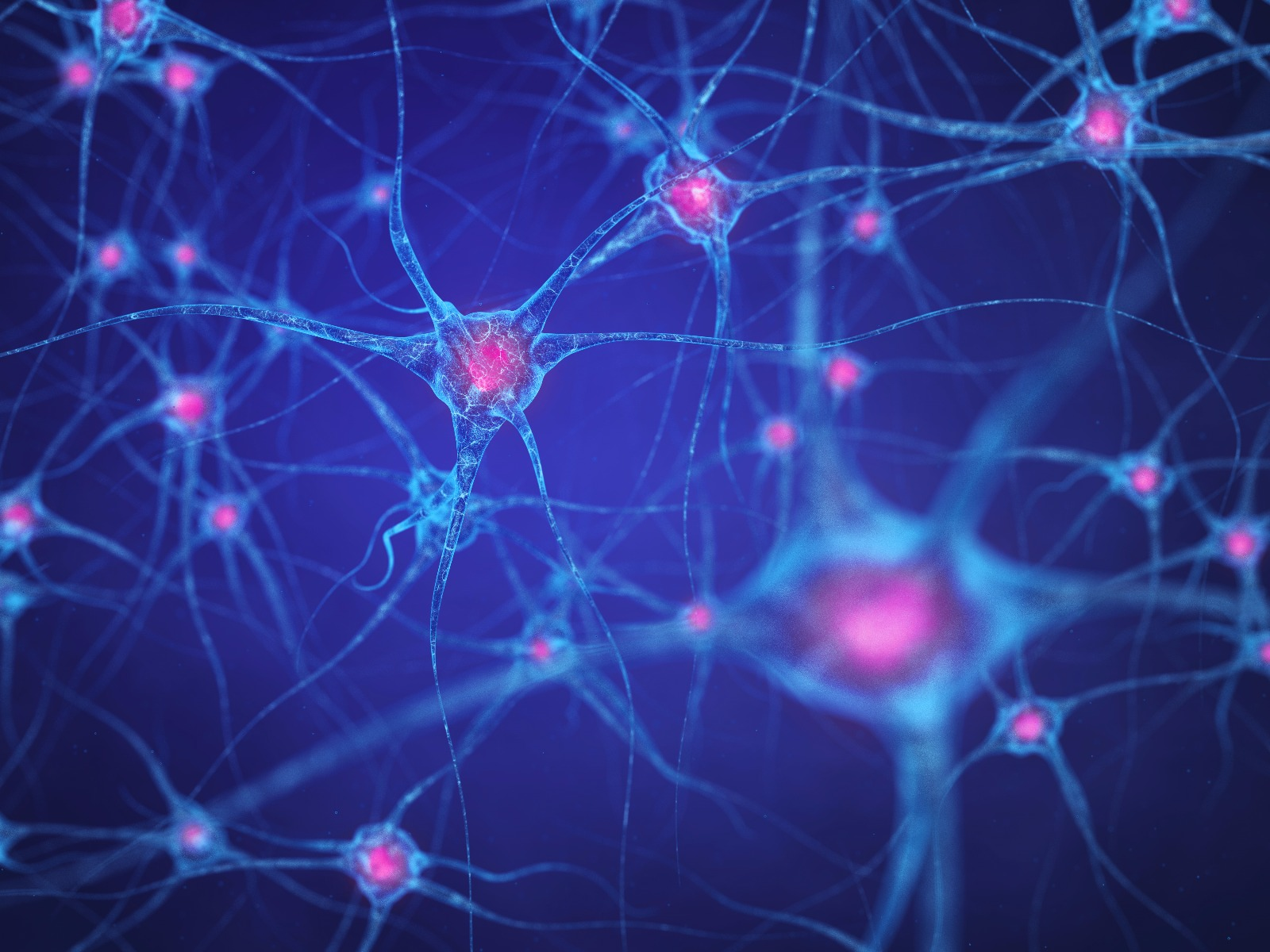 Scientists Discovered 'Mini-Computers' in Human Neurons – Something That A.I. Has Potential of Benefiting From…