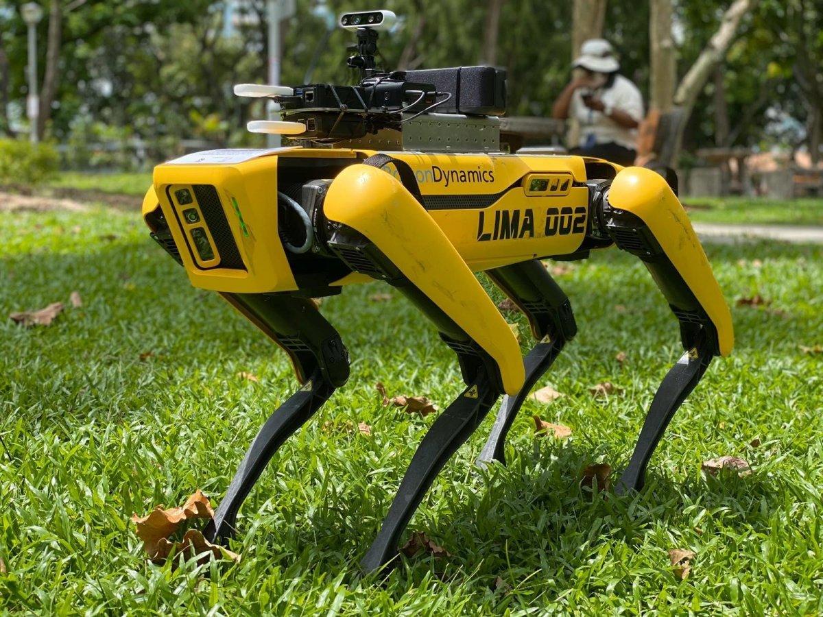 Cane robot a Singapore mantiene il distanziamento sociale
