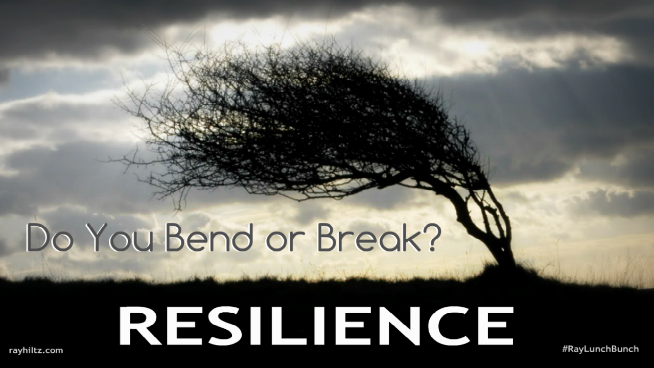Dynamic Presenting | Resilience - How to Develop it for ...