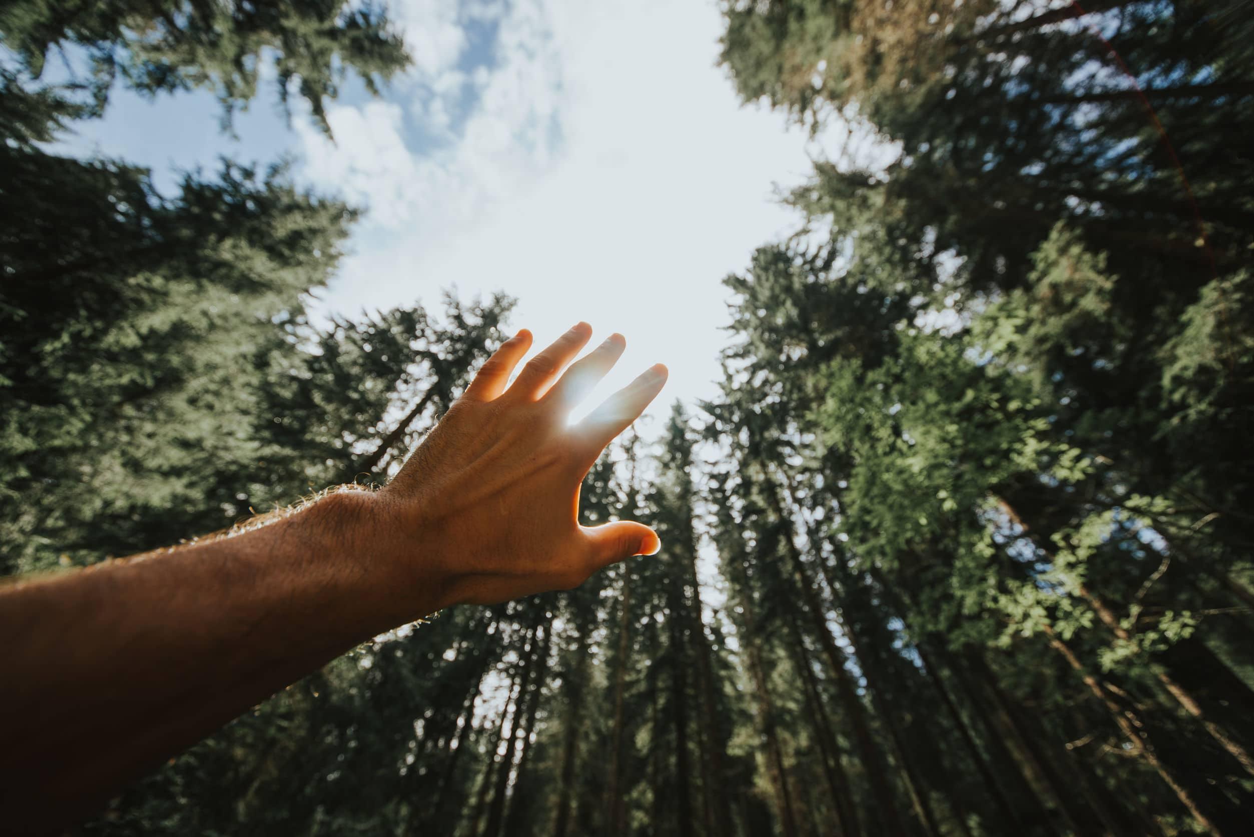 Incrível: Conheça o diálogo da natureza!!
