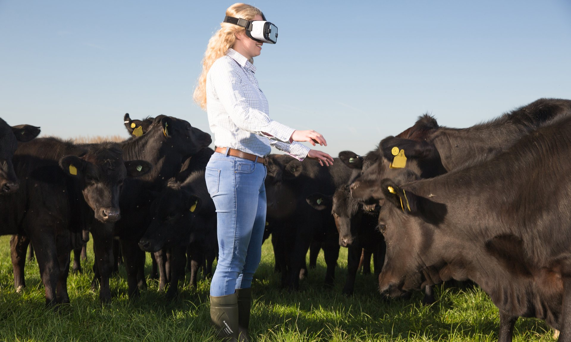 McDonald's to tour events championing British farming with ...