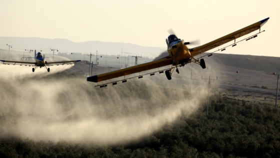 How pesticides can ruin your future - Green Prophet