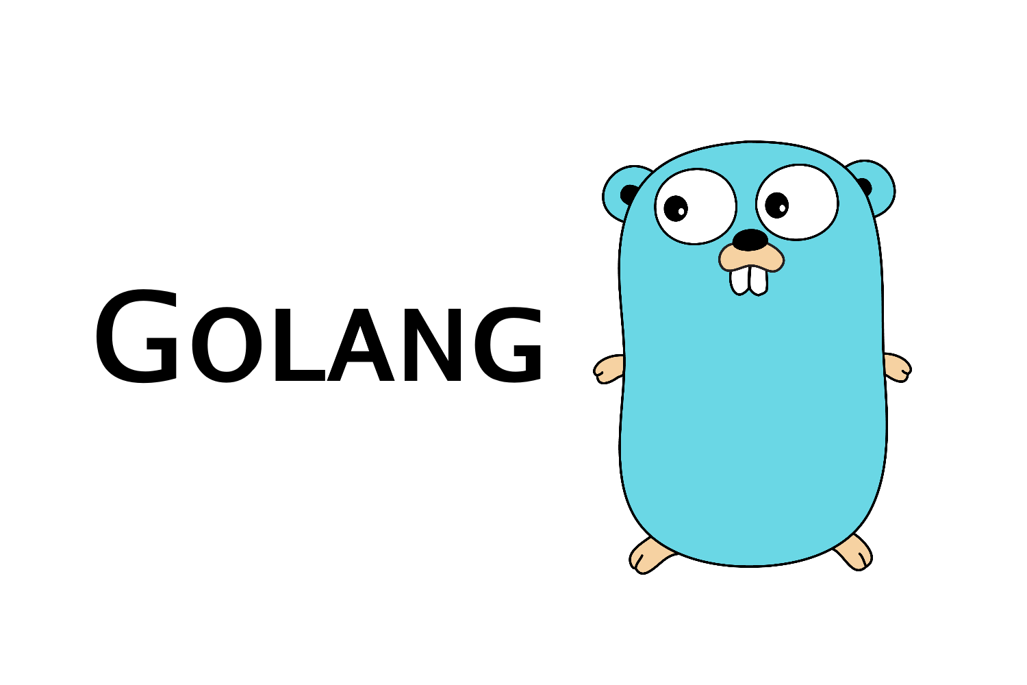 At last, the secrets of golang are revealed