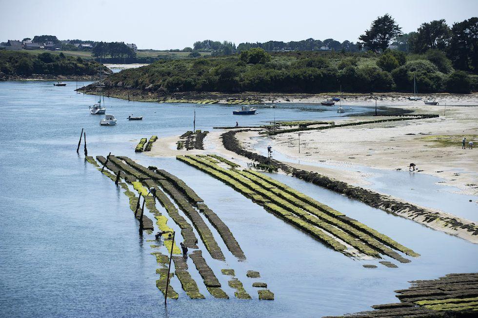 Gli allevamenti di ostriche a Ètel, in Francia - foto - Il ...