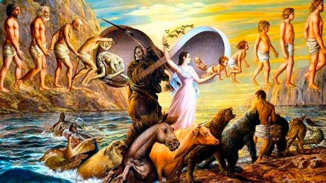 Scientific proof of reincarnation. People's stories. - LiveTray