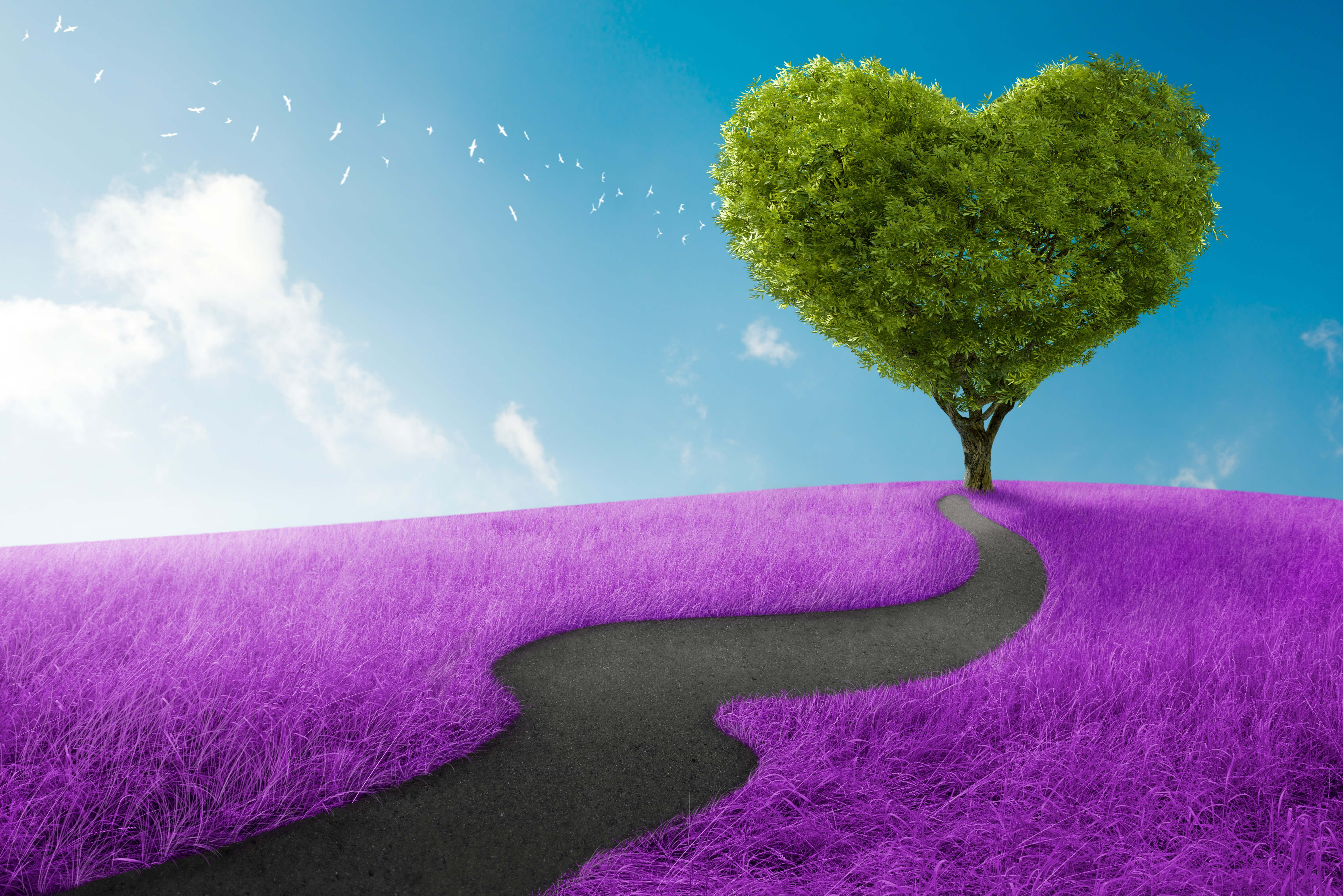 Are You Taking The Happiest Route To Love?