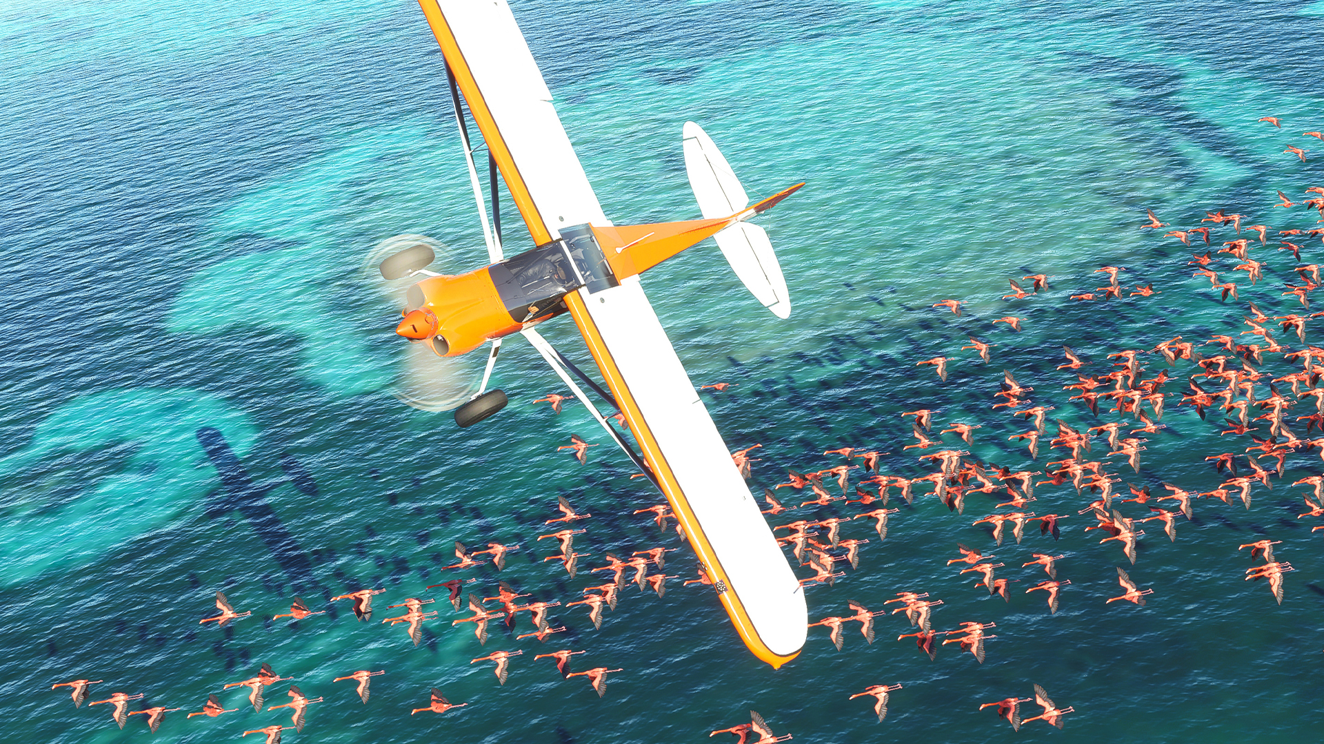 """Microsoft Flight Simulator is """"designed for PC,"""" and ..."""