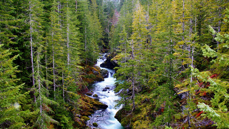 Wilderness Bills Offer Congress a Chance to Preserve ...