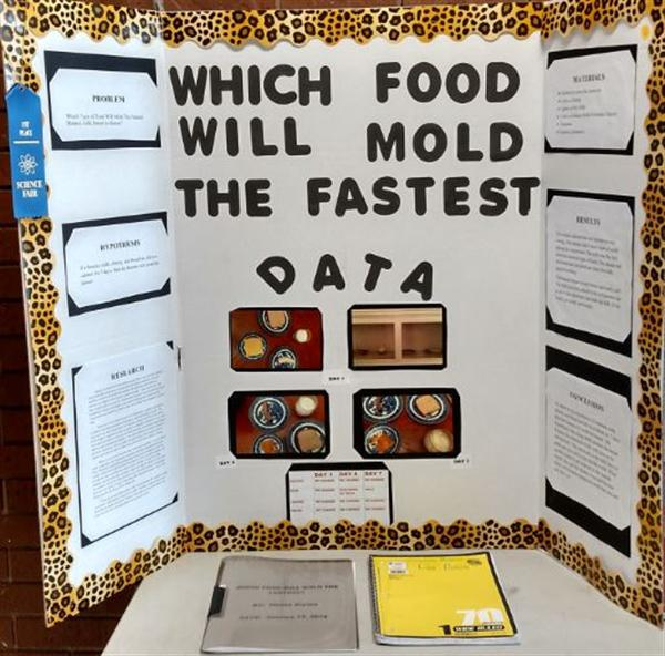 Picture Gallery / Science Fair Projects