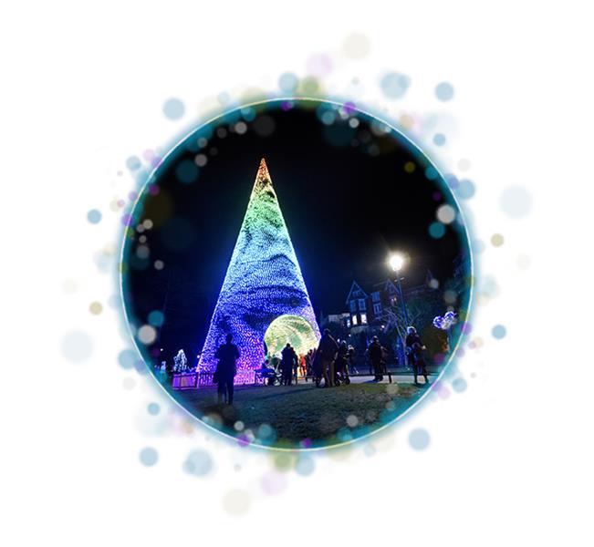 Bournemouth Christmas Tree Wonderland in Bournemouth