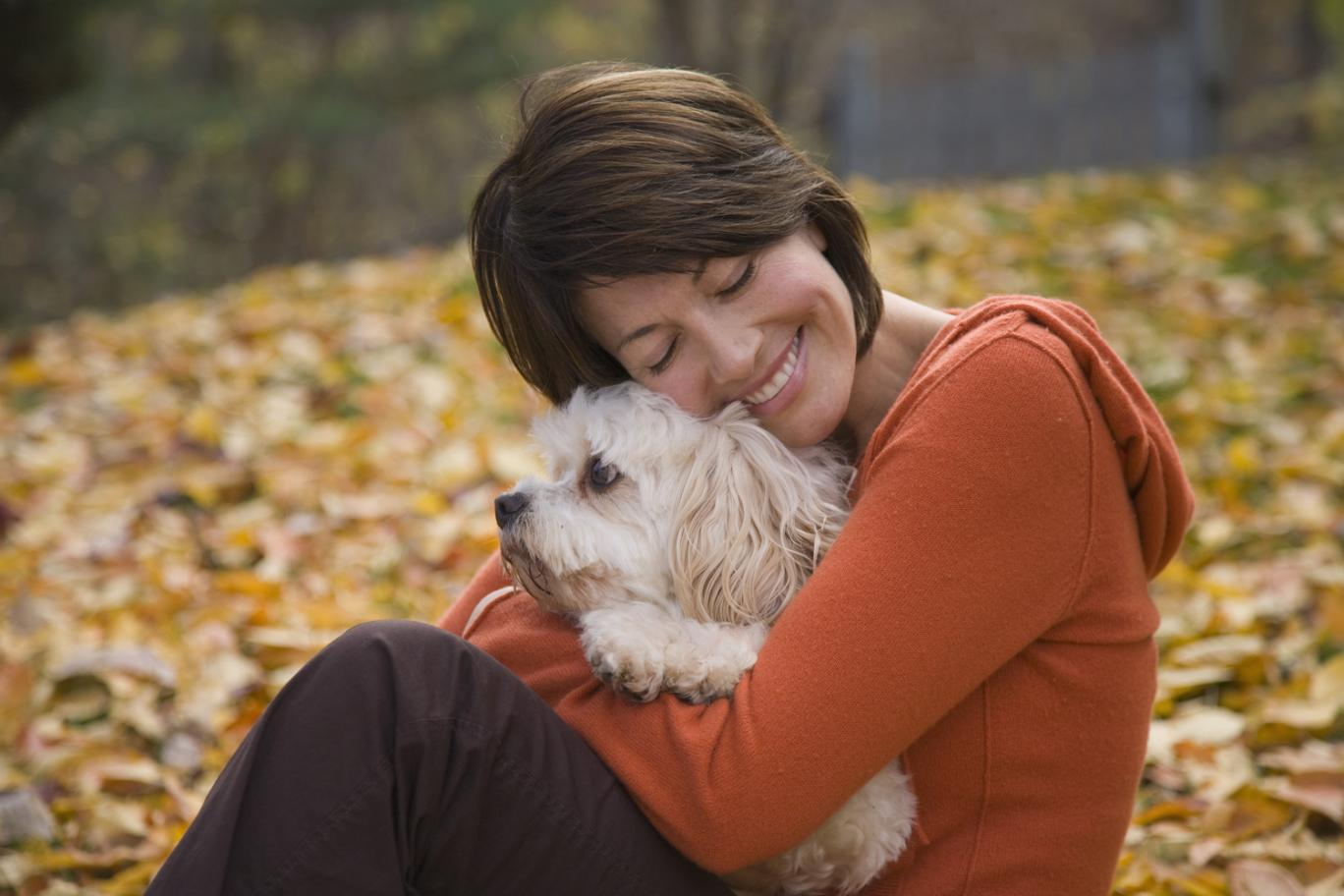 Scientists Say That Dogs Hate Hugs As It Increases Their ...
