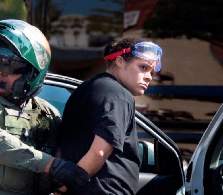 UPDATE: BLM Activist Who Drove Her Car Through Trump ...