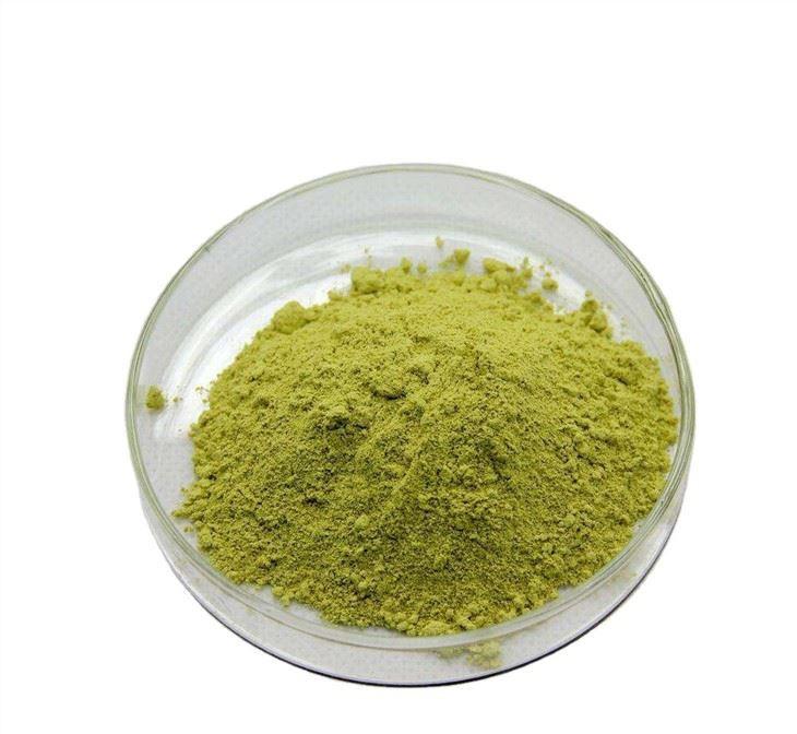 Quercetin Powder - Pure Quercetin Powder - UNDERSUN