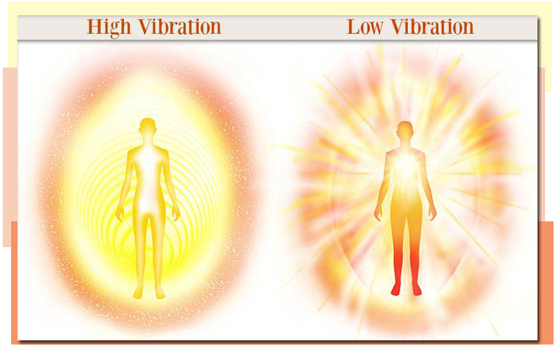 The empath's guide: You hope you have high vibration… but ...