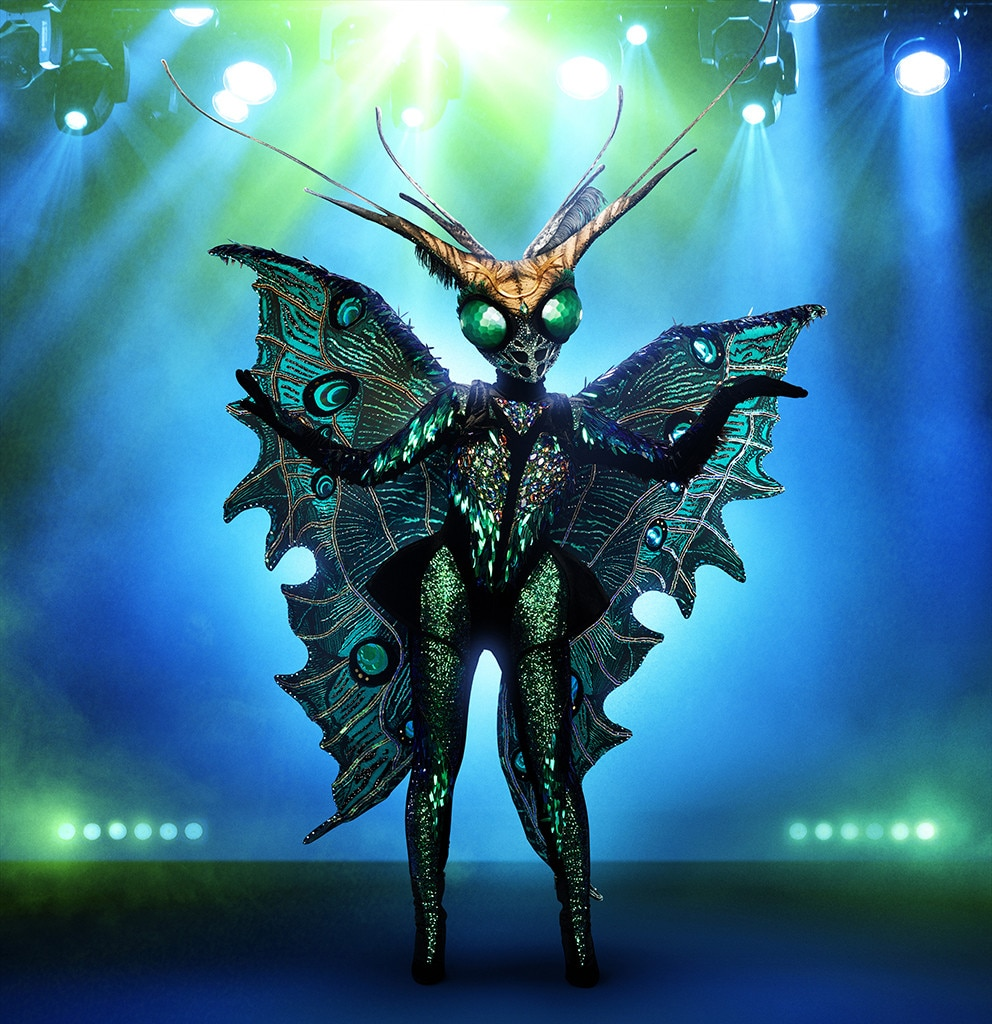 rs_992x1024-190903102423-1024.the-masked-singer-butterfly-lp.9319.jpg&f=1&nofb=1