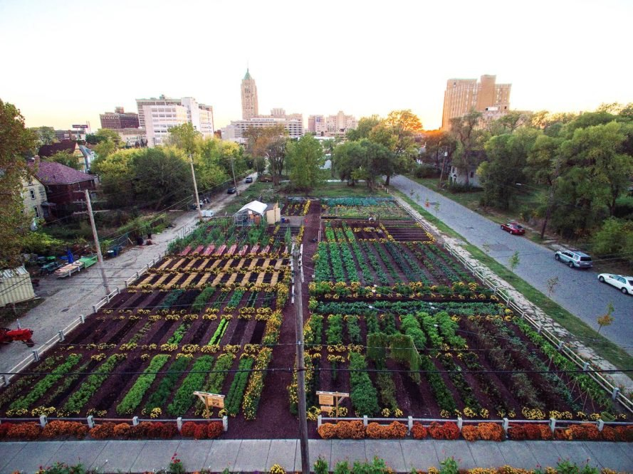 Urban-Farming-Detroit-889x666.jpg&f=1&no