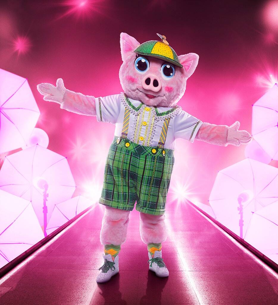 Pig.jpg&f=1&nofb=1